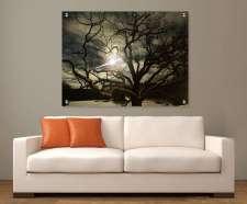 bedford-oak